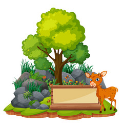 Banner template with little fawn vector