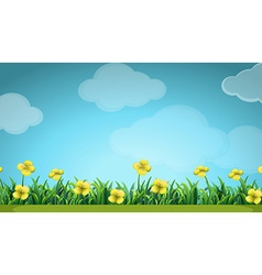 Scene with yellow flowers in the field vector