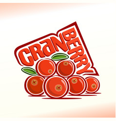 cranberry still life vector image