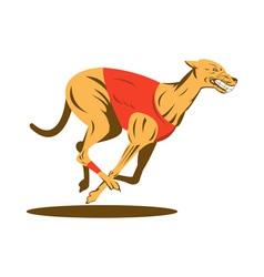 greyhound dog racing vector image vector image