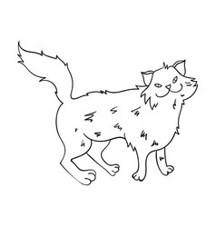 Norwegian forest cat icon in outline style vector