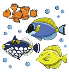 Set of tropical fish isolated objects vector image vector image