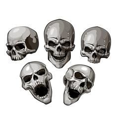 Skulls 4 vector image