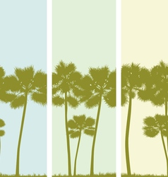 Three banners with the image of palm trees vector