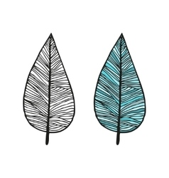 Doodling hand drawn amazing feathers with patterns vector