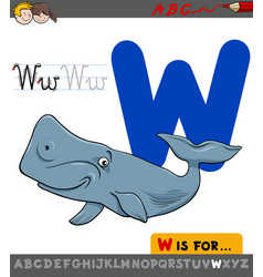 Letter w with cartoon whale animal vector