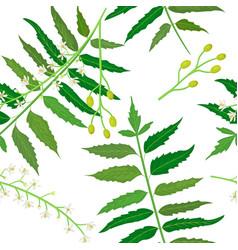 neem or nimtree seamless pattern vector image vector image