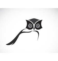 Image of an owl design vector