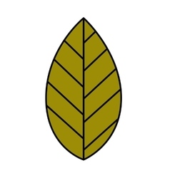 Leaf plant isolated icon design vector