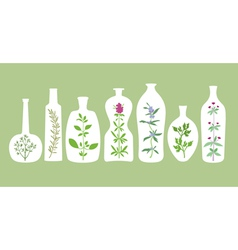 Aromatic plants and bottles silhouettes vector
