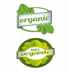 Hundred percent organic label vector