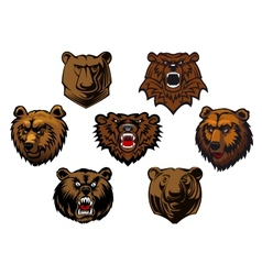 Different brown bear heads vector image