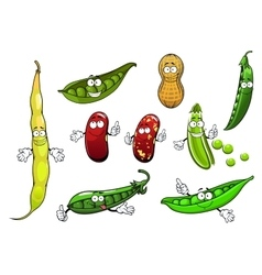 Cartoon isolated peas beans and peanut vector