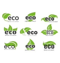 Eco and nature logo labels vector