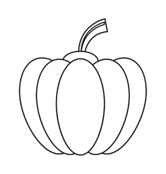 Outline pumpkin harvest bittersweet vegetable icon vector