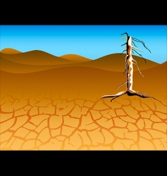 Drought landscape vector