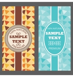 Template packaging multicolored geometric ornament vector