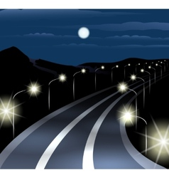Night Highway vector image