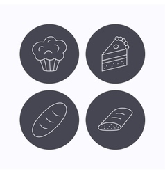 Sweet muffin cake and bread icons vector image vector image