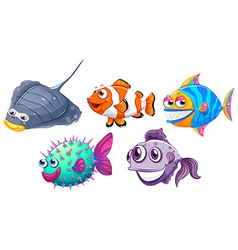 Five different fishes vector image