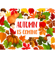 Autumn leaf and harvest vegetable welcome banner vector