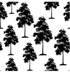 acacia trees seamless vector image