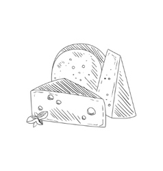 Set of three different cheeses hand drawn vector