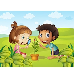 Boy and girl looking at ladybug on leaf vector image