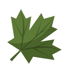 Maple leaf green sign canadian vector