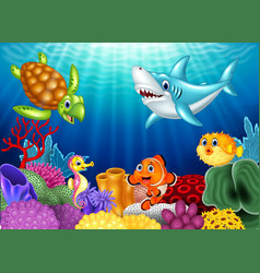 Cartoon tropical fish and beautiful underwater vector image vector image