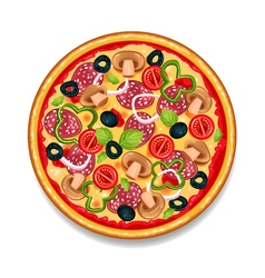Colorful round tasty pizza vector