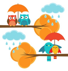 Couples of owls and birds autumn vector image vector image