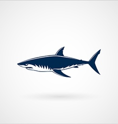 Great white shark sign vector image vector image