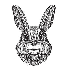 Rabbit or Bunny head isolated on white background vector image