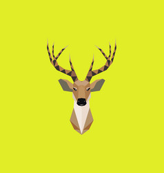 Multicolor deer head in beauty geometric vector