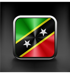 Original and simple saint kitts and nevis flag vector