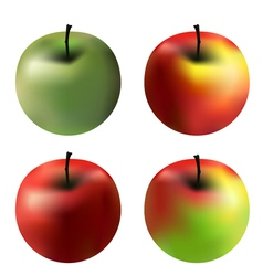 Gradient apples vector