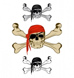 Piracy skull vector