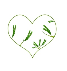 Evergreen leaves in a heart shape border vector