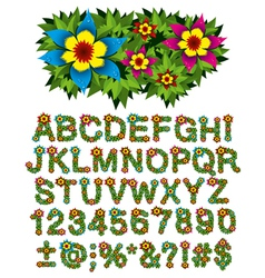 alphabet of flowers vector image