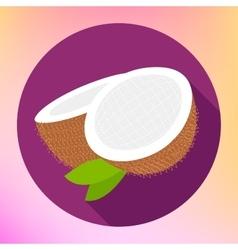 Coconut sign coco food icon vector