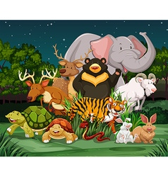 Different types of wild animals in park vector