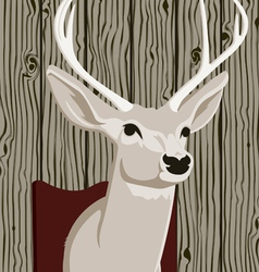 stuffed deer head vector image