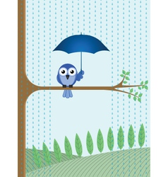 Bird tree rain vector