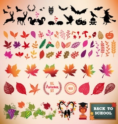 Autumn icon set design elements vector