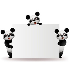 Three pandas with blank sign vector image vector image