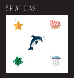 Flat icon marine set of sea star playful fish vector