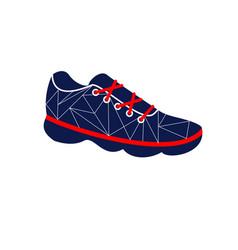 footwear icon vector image