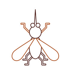 House fly insect and animal disturb cartoon vector
