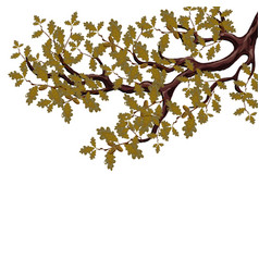 in autumn a yellowed branch of a large oak tree vector image vector image